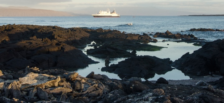 07_galapagos-celebrity-xpedition-ashore-720x330